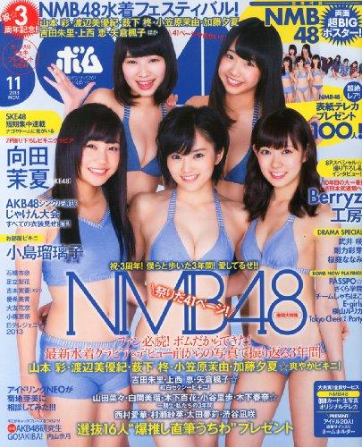 BOMB Magazine 2013 / No. 11
