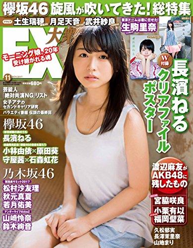 EX Taishu 2017 / No. 11
