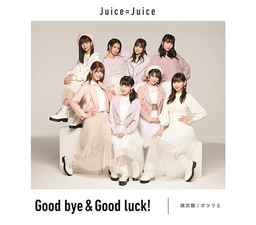Bitansan / Potsuri to / Good bye & Good luck! (Type C) [CD]